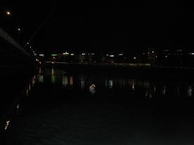 PIC_0055 Geneva at Night with Swan