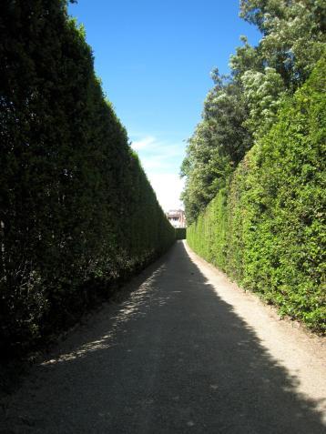 1218 Garden Path