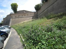 1466 Outer Gardens