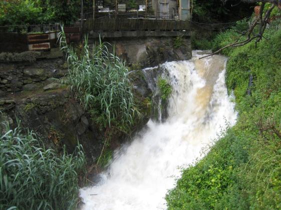 1521 Waterfall