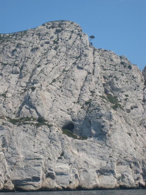 1639 Lone Pine