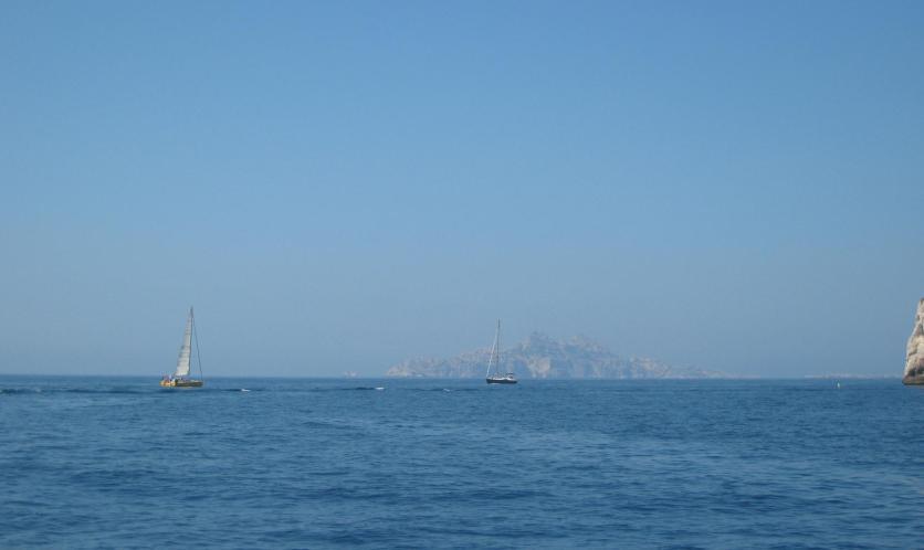 1651 Sailboats